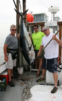 Mass Bay Tuna Fishing