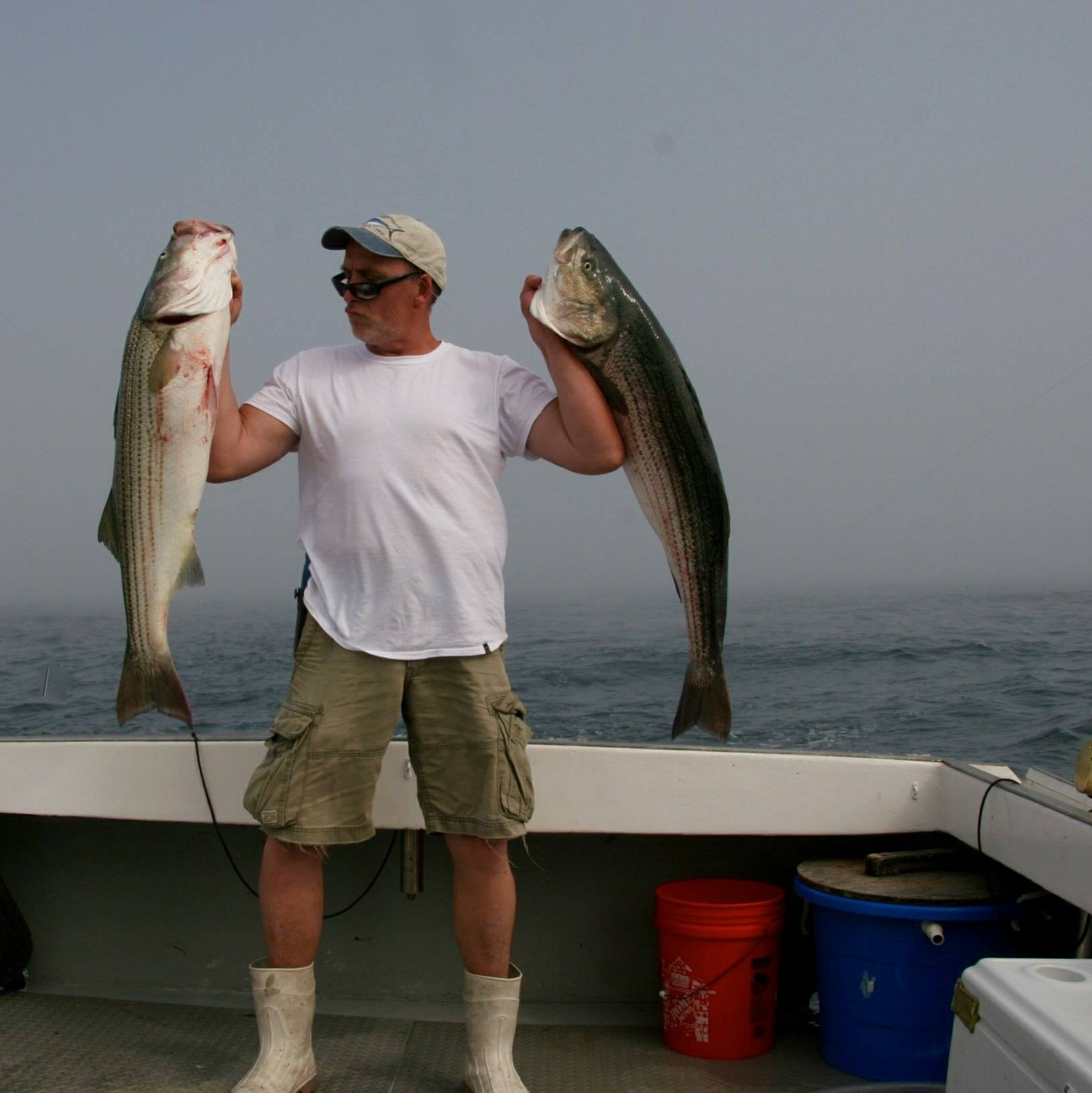 Boston ma fishing charters labrador fishing charters for Boston fishing charters